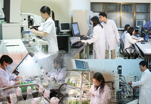 Lập trình trong ngành khoa học môi trường
